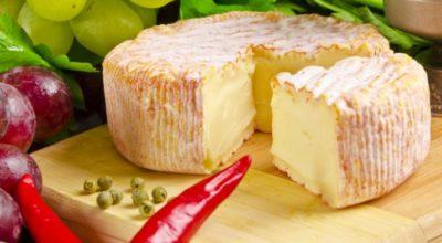 Домашний французский сыр: очень простой рецепт
