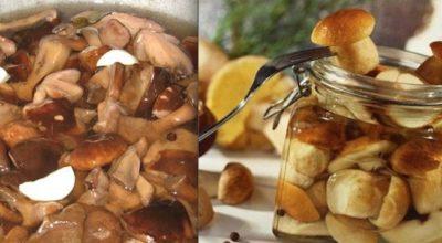 Идеальный и потрясающий маринад для любых грибов