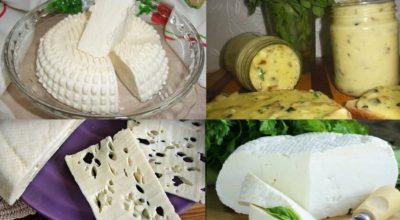 Вкусные домашние сыры. 15 рецептов приготовления