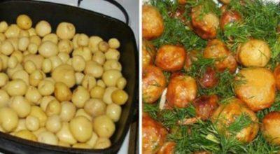 Что приготовить из молодого картофеля: 5 обалденных блюд